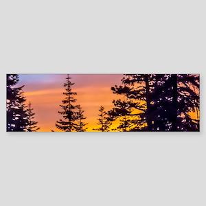 Evergreen Sunset Sticker (Bumper)