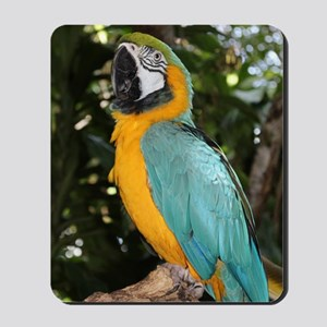 Yellow and Blue Macaw Mousepad