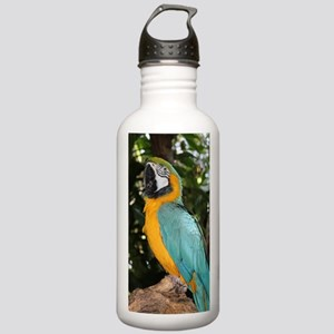 Yellow and Blue Macaw Stainless Water Bottle 1.0L