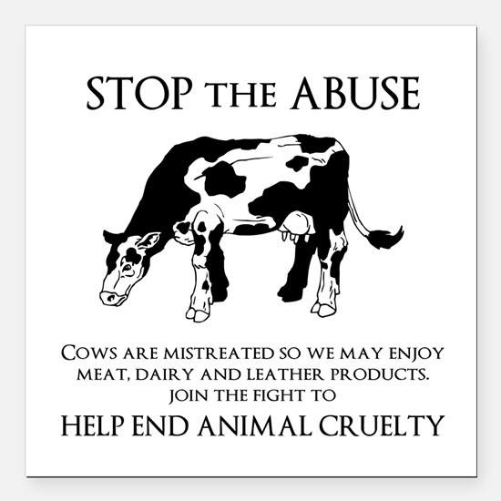 "Cow Abuse Square Car Magnet 3"" x 3"""