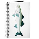European Seabass Bass Journal