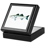 European Seabass Bass Keepsake Box