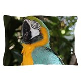 Macaw Pillow Cases