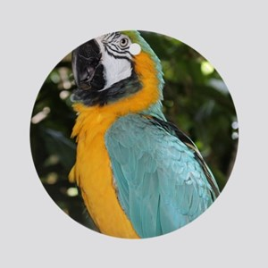 Yellow and Blue Macaw Ornament (Round)