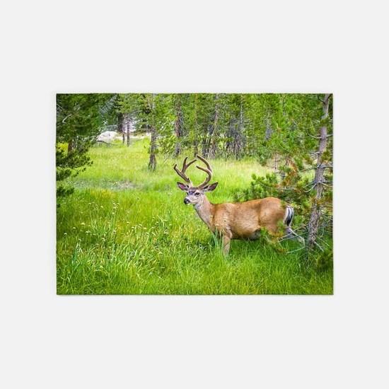 Buck in a Lush Green Meadow 5'x7'Area Rug