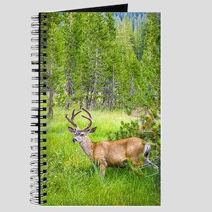 Buck in a Lush Green Meadow Journal