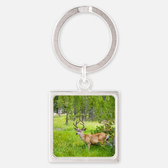 Buck in a Lush Green Meadow Square Keychain