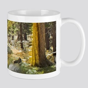 Sun Splashed Forest Mugs