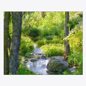 Shady Green Creek Scene Small Poster