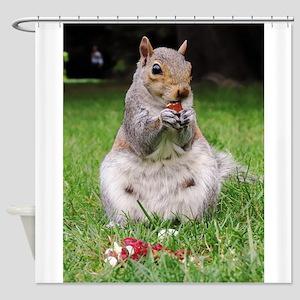 Cute Squirrel Enjoying Nut Shower Curtain