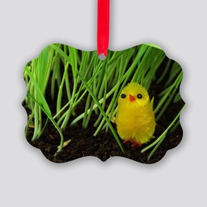 grass baby chick Picture Ornament
