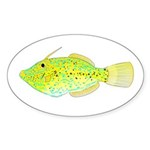 Scrawled Filefish Sticker