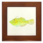 Scrawled Filefish Framed Tile