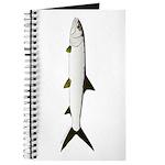 Ladyfish Journal