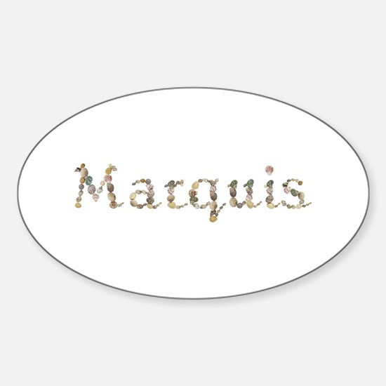 Marquis Seashells Oval Decal