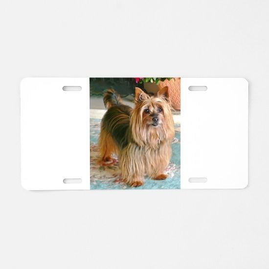 Australian Silky Terrier Aluminum License Plate