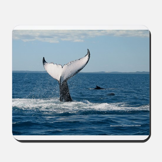 Under Tail 4000.jpg Mousepad