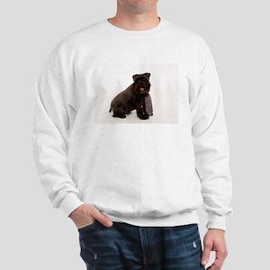 IMG_9540 Sweatshirt