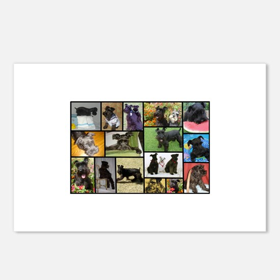 Black Schnauzer Collage Postcards (Package of 8)