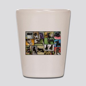 Black Schnauzer Collage Shot Glass