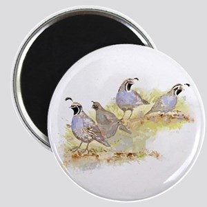 Covey of California Quail Birds Magnets