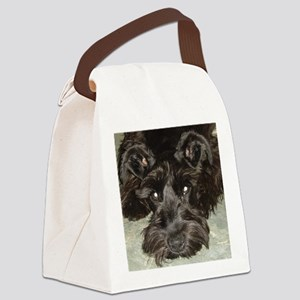 atticussquareface Canvas Lunch Bag