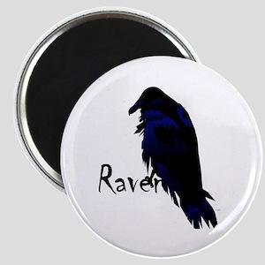 Raven Perched on Raven Magnet