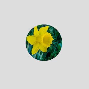 Yellow Daffodil Mini Button