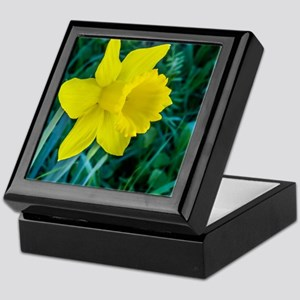 Yellow Daffodil Keepsake Box
