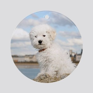 DOG AT THE BEACH Ornament (Round)