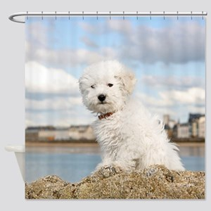 DOG AT THE BEACH Shower Curtain