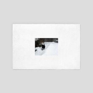 Snow Path 4' x 6' Rug