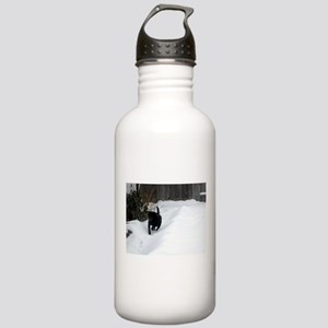 Snow Path Stainless Water Bottle 1.0L