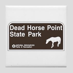 Dead Horse Point State Park, Utah Tile Coaster