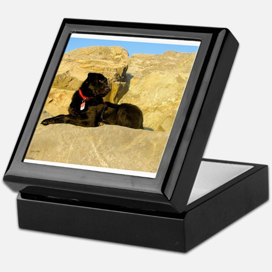 Rock Puppy Keepsake Box