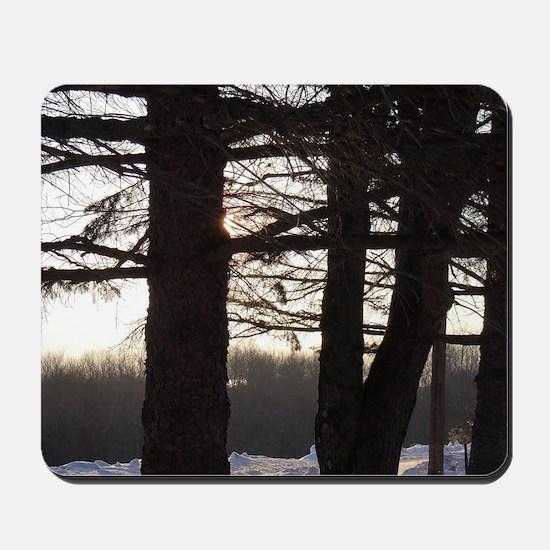 Through the Trees Mousepad