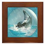 Bubble Dolphin Framed Tile