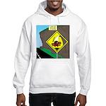 better falling rock Hooded Sweatshirt