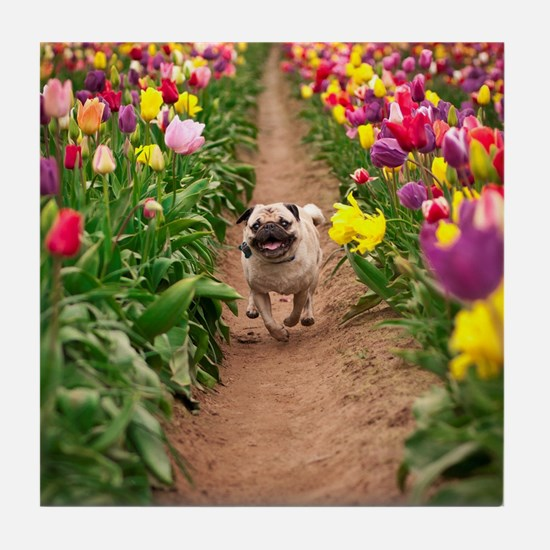 Pug in the Tulips Tile Coaster