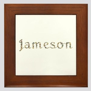 Jameson Seashells Framed Tile