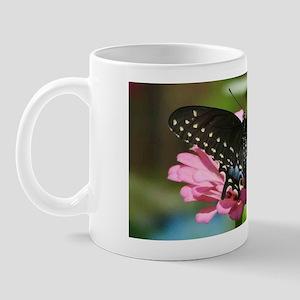 6967 Black Swallowtail Mug