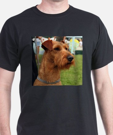 2 irish terrier T-Shirt