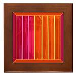 Americana Neon Framed Tile