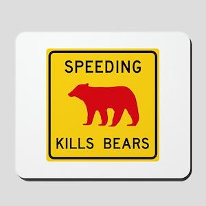 Speeding Kills Bear, California (US) Mousepad