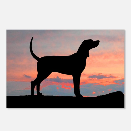 Sunset Coonhound Postcards (Package of 8)