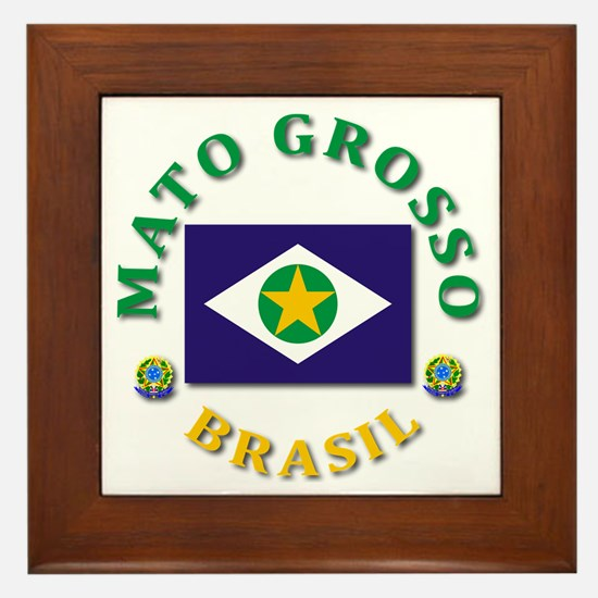 Mato Grosso Framed Tile