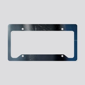 Itsy Bitsy License Plate Holder