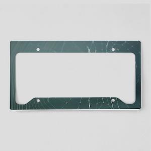 Spider License Plate Holder