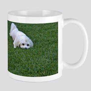 White dog, Green Grass Mugs