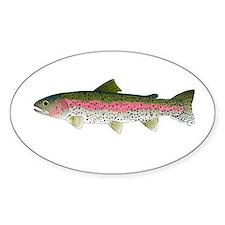 Rainbow Trout - Stream Sticker